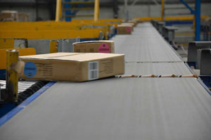 Warehouse Safety Improvements